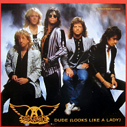 Aerosmith - Dude (Looks Like A Lady) Noten für Piano