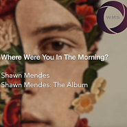 Shawn Mendes - Where Were You In The Morning? Noten für Piano