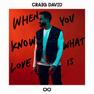 Craig David - When You Know What Love Is Noten für Piano