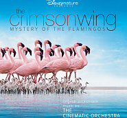 The Cinematic Orchestra - Arrival of The Birds Noten für Piano