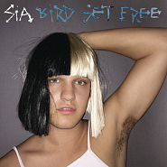 Sia - Bird Set Free Noten für Piano