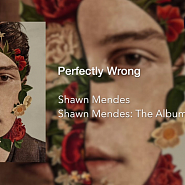 Shawn Mendes - Perfectly Wrong Noten für Piano